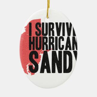 I Survived Hurricane Sandy  T-Shirt Ceramic Oval Ornament