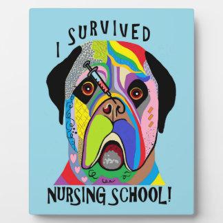 I Survived Nursing School Plaque