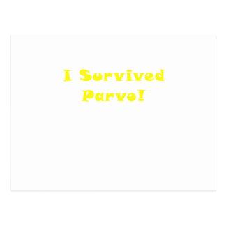 I Survived Parvo Postcard