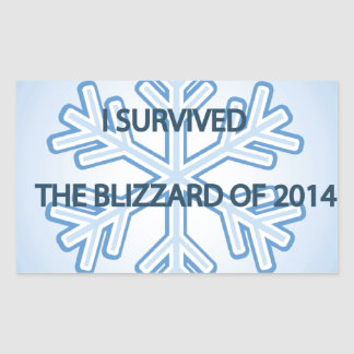 I survived the blizzard of 2014 snowflake