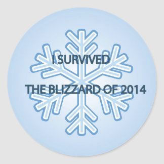 I survived the blizzard of 2014 snowflake round sticker
