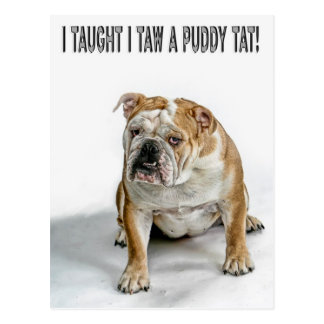 I taught I taw a puddy tat Postcard