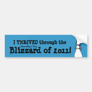 I thrived the Groundhog's Day Storm of 2011 Bumper Sticker