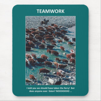 i-told-you-we-should-have-taken-the-ferry mouse pad