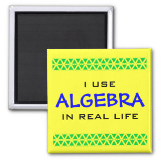 I USE ALGEBRA IN REAL LIFE MAGNET
