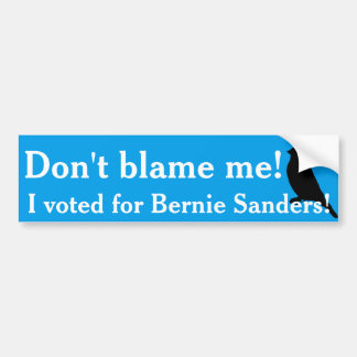 I voted for Bernie! Bumper Sticker