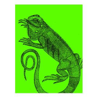 I Wanna Iguana Postcard