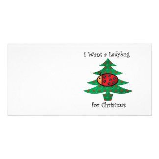 I want a ladybug for christmas custom photo card