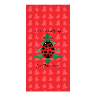 I want a ladybug for christmas red christmas trees card