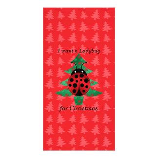 I want a ladybug for christmas red christmas trees photo card template
