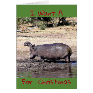 """""""I Want A (photo of hippo) For Christmas"""" Card"""
