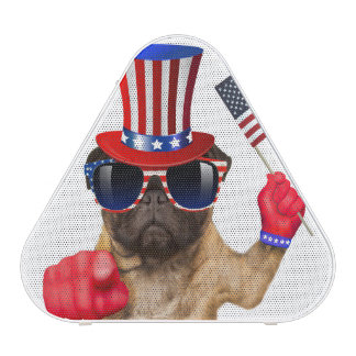 I want you ,pug ,uncle sam dog, blueooth speaker
