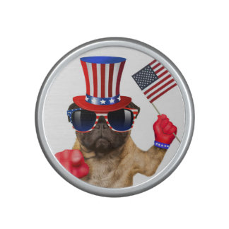 I want you ,pug ,uncle sam dog, bluetooth speaker
