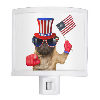 I want you ,pug ,uncle sam dog, night lights