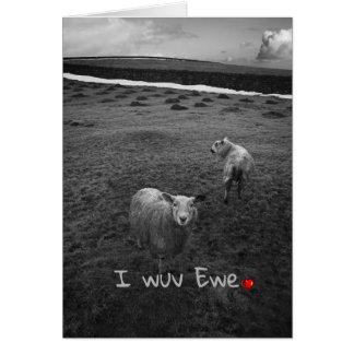 I wuv Ewe - funny Valentine Card