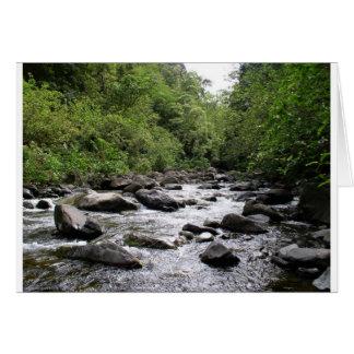 Iao River, Maui, Hawaii Card