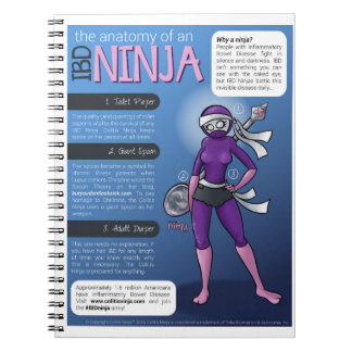 IBD Notebook