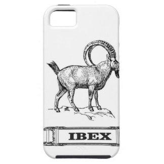 ibex fancy curl iPhone 5 case