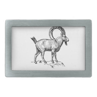 ibex fancy curl rectangular belt buckle