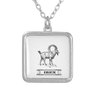 ibex fancy curl silver plated necklace