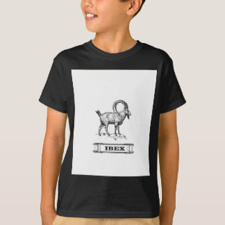 ibex fancy curl T-Shirt