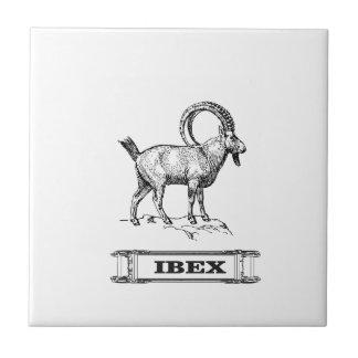 ibex fancy curl tile