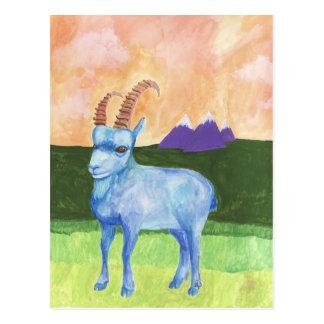 ibex postcard