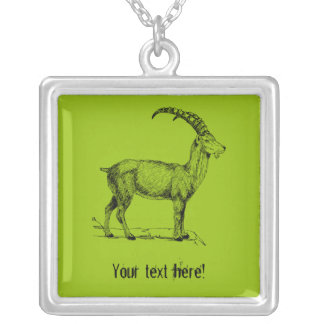 Ibex Silver Plated Necklace