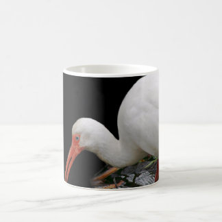 Ibis Photograph On Coffee Mug