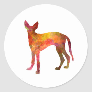 Ibizan Hound in watercolor Classic Round Sticker