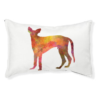 Ibizan Hound in watercolor Pet Bed