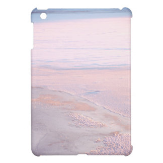 ice background iPad mini case