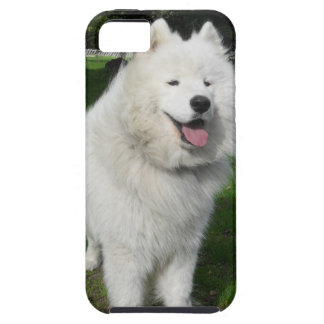 ice bear iPhone 5 covers
