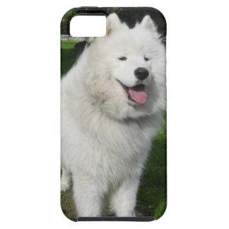 Ice bears... iPhone 5 case