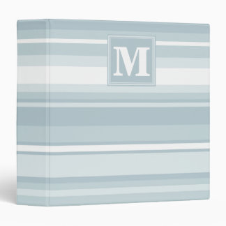 Ice blue stripes vinyl binders