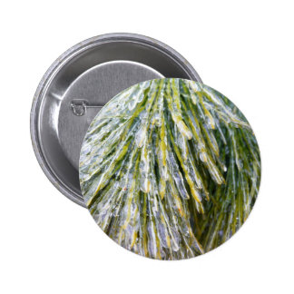 Ice-Coated Pine Needles Winter Nature Photography 2 Inch Round Button
