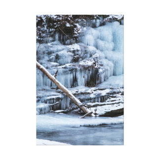 Ice Covered Creek Bank Canvas Print