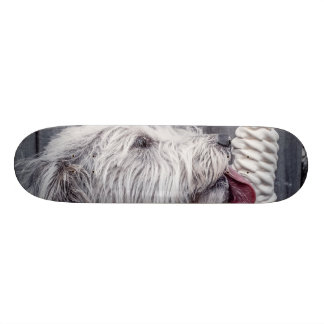 Ice Cream and Dog Skateboard