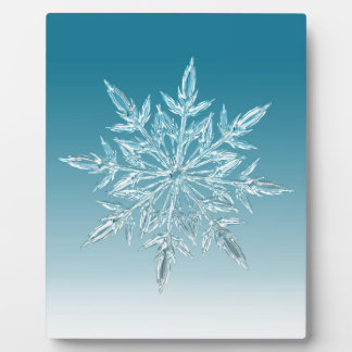 ice crystal plaque