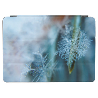 Ice Crystal,  Wintertime, Snow, Nature iPad Air Cover