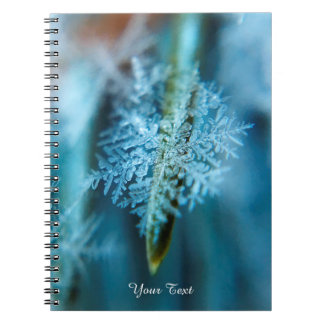 Ice Crystal,  Wintertime, Snow, Nature Notebooks