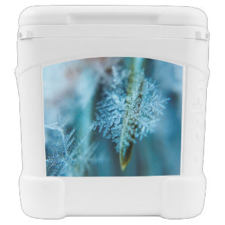 Ice Crystal,  Wintertime, Snow, Nature Rolling Cooler
