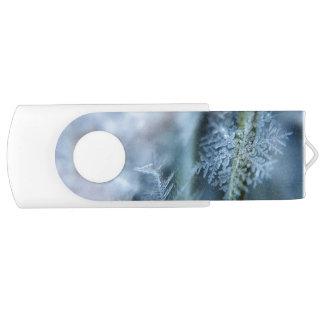 Ice Crystal,  Wintertime, Snow, Nature Swivel USB 2.0 Flash Drive