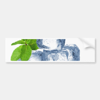 Ice cube cool yourself bumper sticker