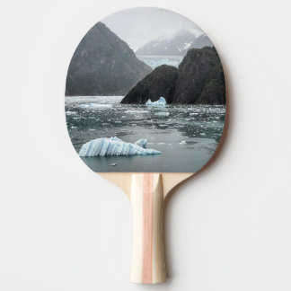 Ice in Tracy Arm Fjord Paddle