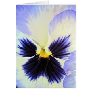 Ice Pansy Greeting Card