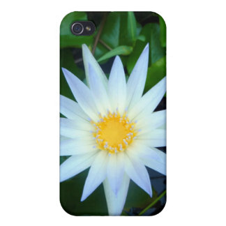 Iceblue Water Lily iPhone 4 Hard Shell Speck Case iPhone 4/4S Covers