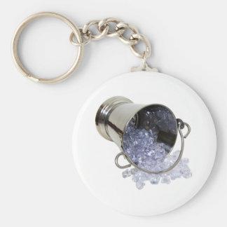 IceBucket060709 Basic Round Button Keychain