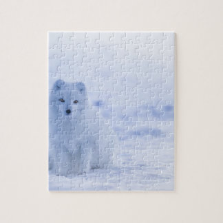 iceland animals power white jigsaw puzzle