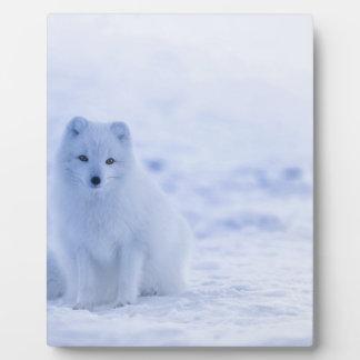 iceland animals power white plaque